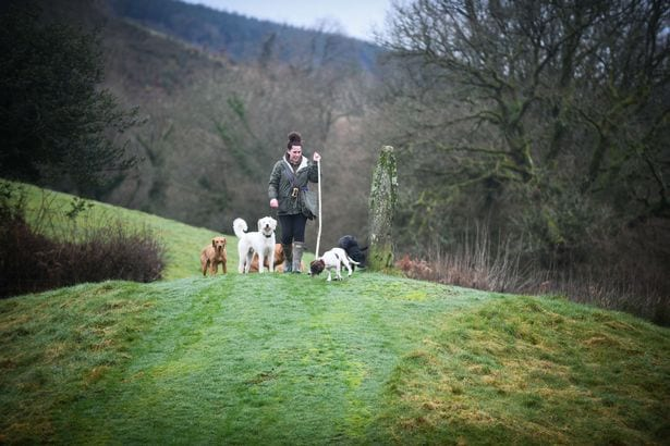 Sian Richards in the rural landscape of the farm, walking some of it's residents.